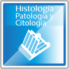 Histologia-06
